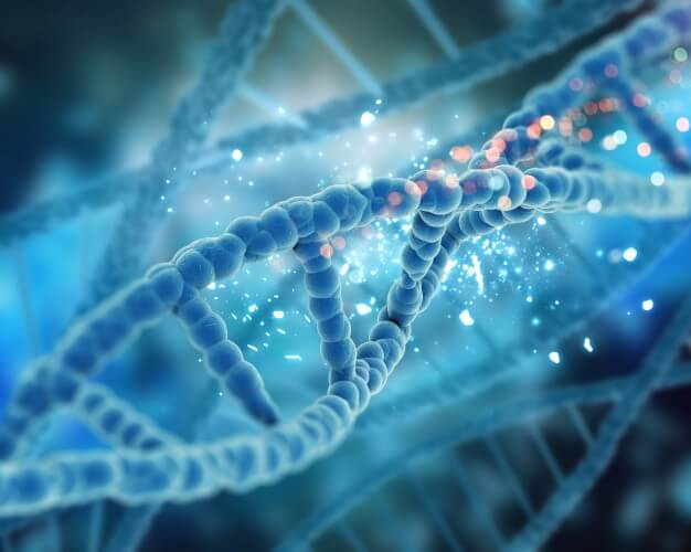 dna closely 1048 2632